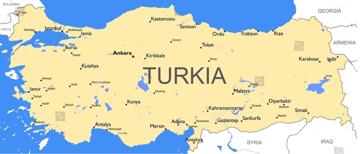 """H  Serhan Süzer - Our country's English name should be """"Turkia"""""""